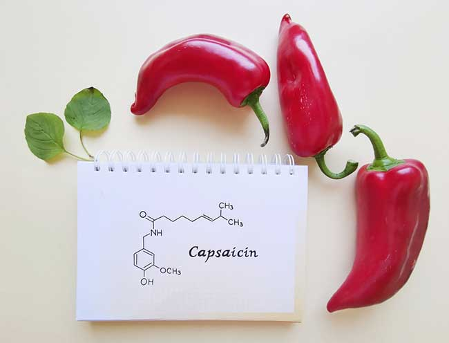 Capsaicin - capsicum red pepper
