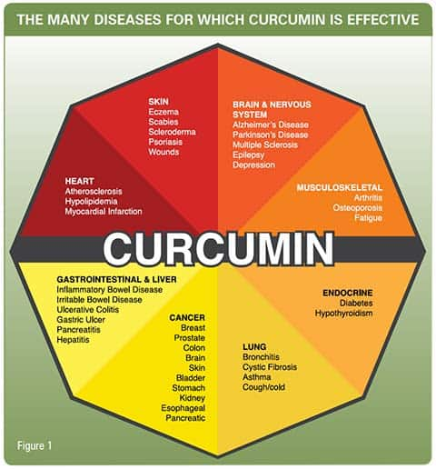 how does curcumin benefit health