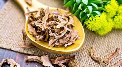 Does Rhodiola help weight loss