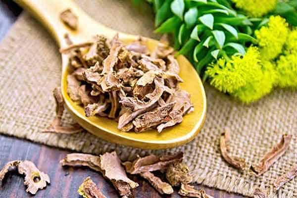 Rhodiola and weight loss