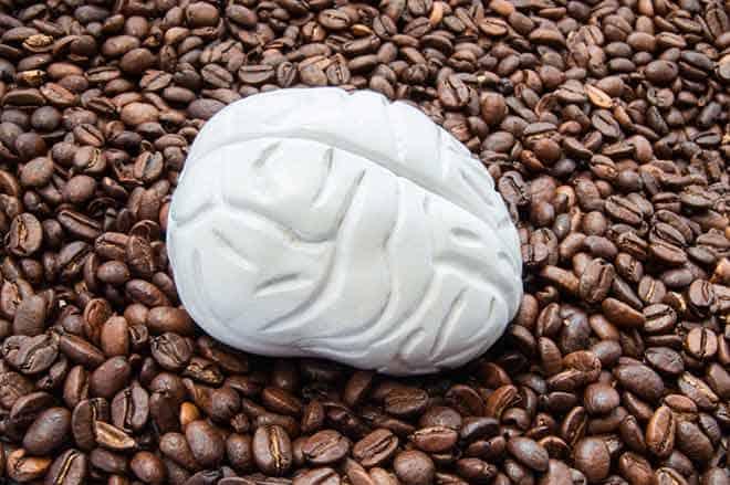 caffeine and the brain