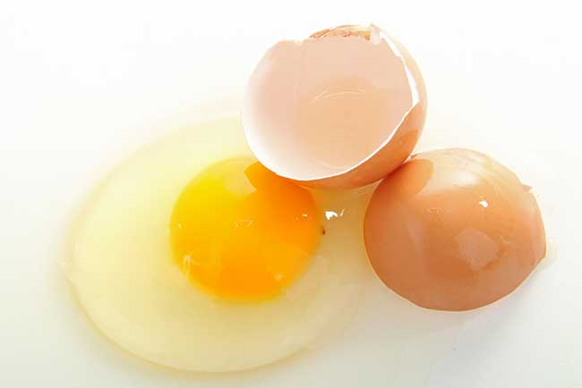 Egg yolk or Albumin