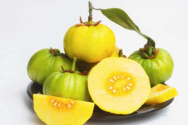 Garcinia cambogia is a natural appetite suppressant
