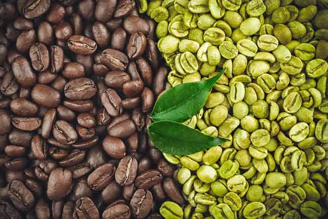 Green Coffee Beans Vs Roast Coffee Beans: What You Need to Know